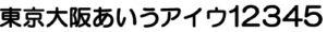 MS-013 丸ゴシック